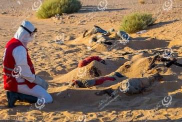 العثور على 19 جثة بالقرب من الجغبوب