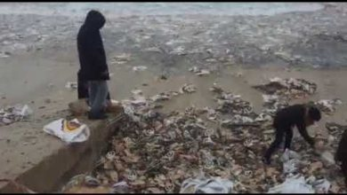 Photo of الأحوال الجوية تسبب سقوط حاويات من باخرة قبل دخولها ميناء طرابلس