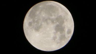 Photo of كوكب المشتري يظهر واضحا بجوار القمر في سماء إجخرة