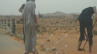 Photo of شباب يتطوع لإزالة الكثبان الرملية عن الطريق