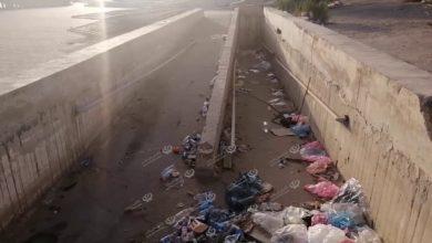 Photo of تكدس للملوثات الورقية والبلاستيكية في بحيرة السرايا وسط طرابلس