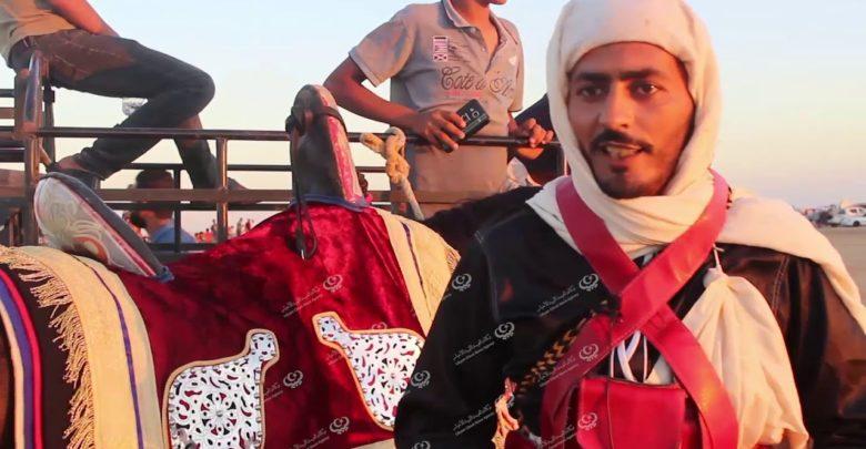 Photo of (الميز و الملهاد) من رياضات ركوب الخيل