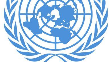 Photo of بعثة الأمم المتحدة تدين غارة على نادي الفروسية في جنزور وترسل فريق للموقع
