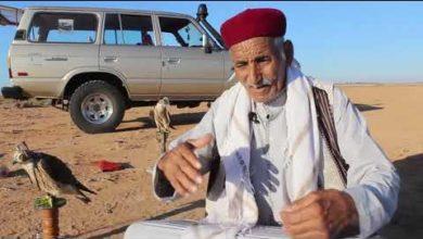 Photo of بداية موسم صيد الطيور الجارحة في شرق ليبيا