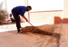 Photo of حملة تطوعية لتنظيف وتزيين وصيانة مرافق مدرسة سناء محيدلي في بني وليد