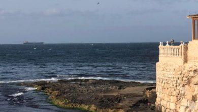 Photo of توافد ناقلات الوقود والغاز على ميناء طرابلس