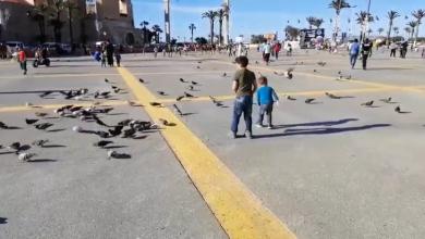 Photo of الحركة تقترب من طبيعتها بالتدريج في العاصمة طرابلس