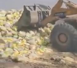 Photo of إتلاف كميات من الأرز غير مطابق للمواصفات بالخمس