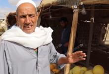 Photo of طبرق أهم مدن الجبل الأخضر فى الزراعة البعلية