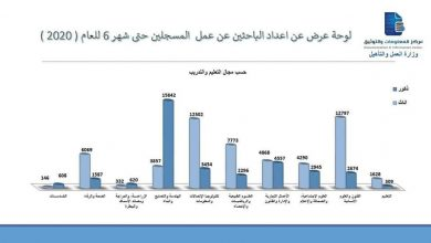 Photo of أعداد الباحثين عن عمل والمسجلين حتى منتصف 2020