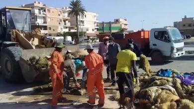 Photo of جمع قمامة العيد ومخلفات الأضاحي من شوارع وأحياء زوارة قبل تكدسها