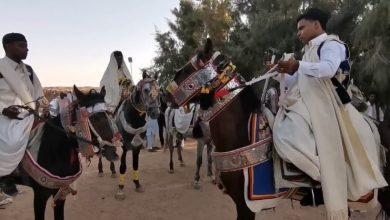 Photo of اختتام فعاليات المهرجان الأول للفروسية والميز الشعبي ببلدية بنت بية