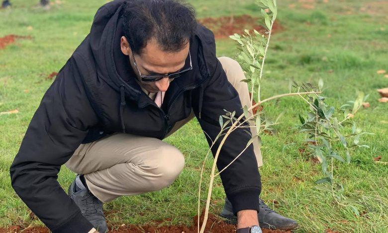 Photo of حملة تشجير هكتار بأشجار الزيتون ومصدات للرياح من أشجار السرو بالبيضاء