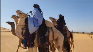 Photo of سباق المهاري بمهرجان غات السياحي الدولي