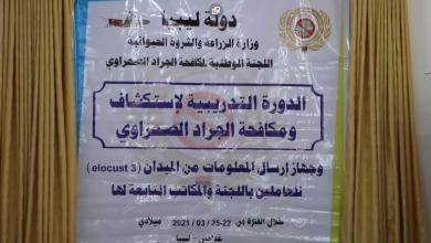 Photo of دورة تدريبية في غدامس لاستكشاف و مكافحة الجراد الصحراوي